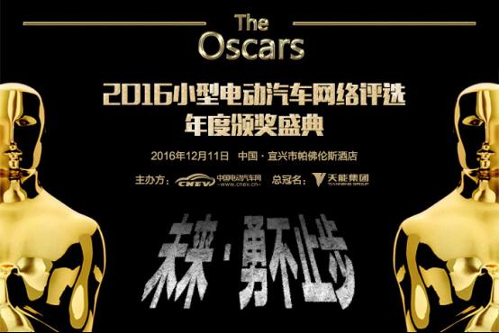 2016小型电动汽车网络评选年度颁奖盛典