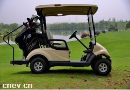 东风两座高尔夫球车